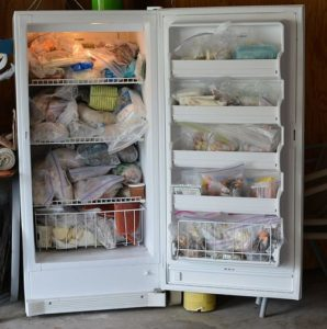 Overloaded, nasty freezer - Spring cleaning time!