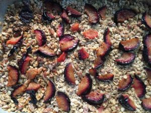 Heirloom Apple Plum Crisp