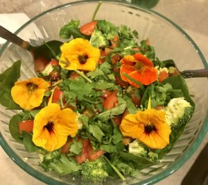 Beautiful salad!