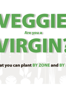 You also veggie virgin vegetable planting guide calendar by zone and month rh urbanorganicgardener