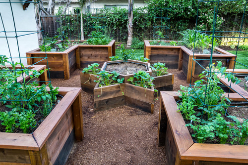 12 Unique And Fun Raised Garden Bed Ideas Urban Organic Gardener