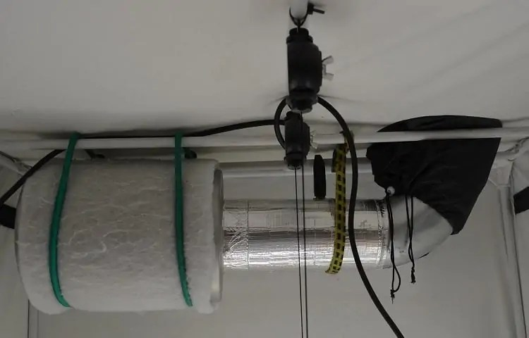 best small grow tent 2x2 or 3x3 setup