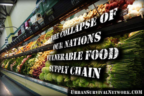 How to Survive the Collapse of Our Vulnerable Food Supply Chain