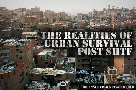 Survival in a Post Collapse Urban Environment