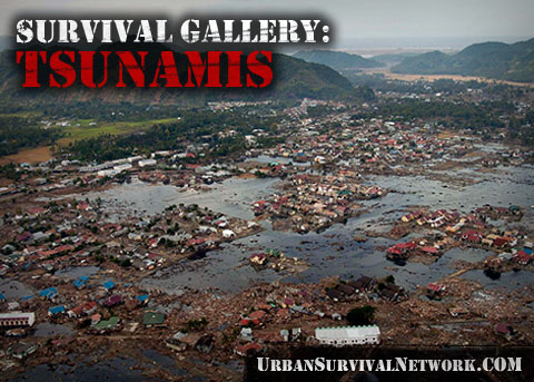 Pictures of a Tsunami Disaster