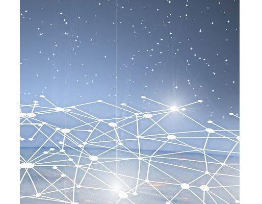 514x1057-network