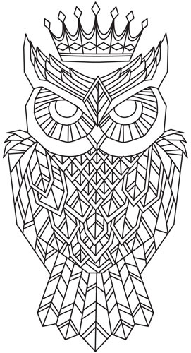 1000+ images about Owl Fancy on Pinterest