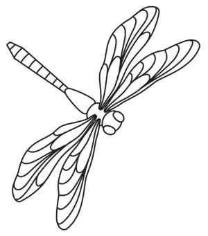 miniature menagerie dragonfly