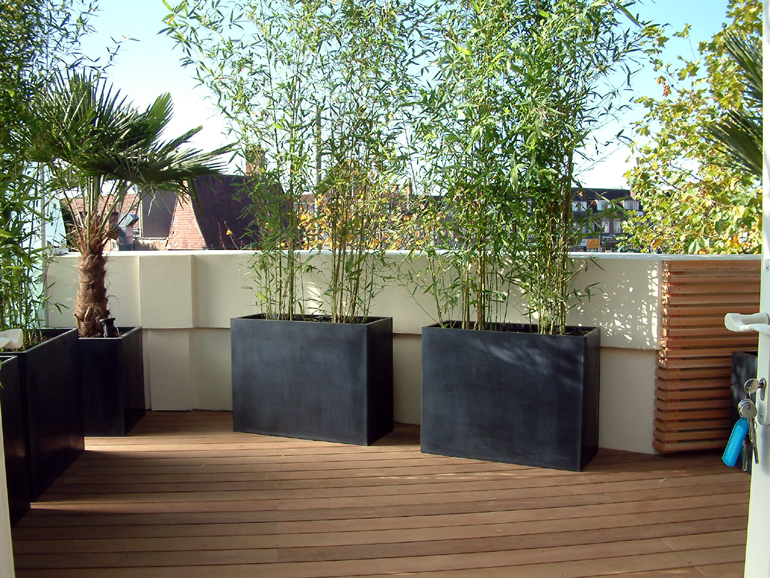 Contemporary Minimalist Balcony Design London Urban Tropics
