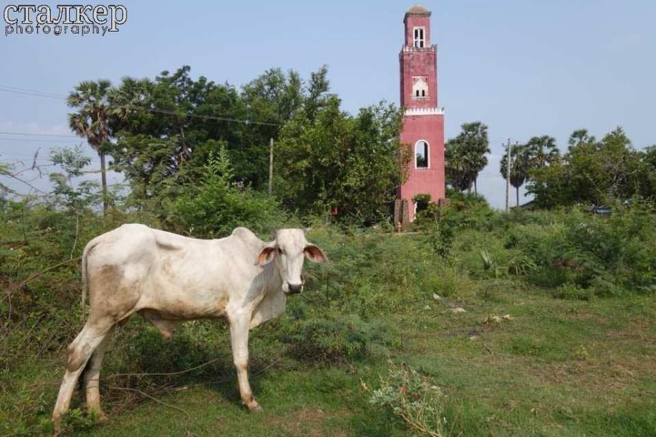 Mekong Watchtower