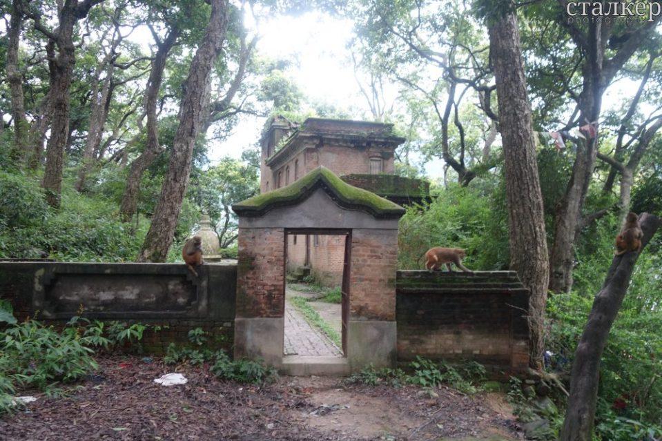 Swayambu Hill