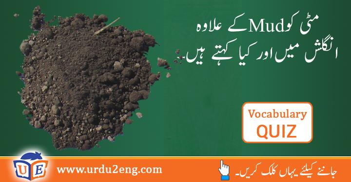 turpentine Urdu Meanings