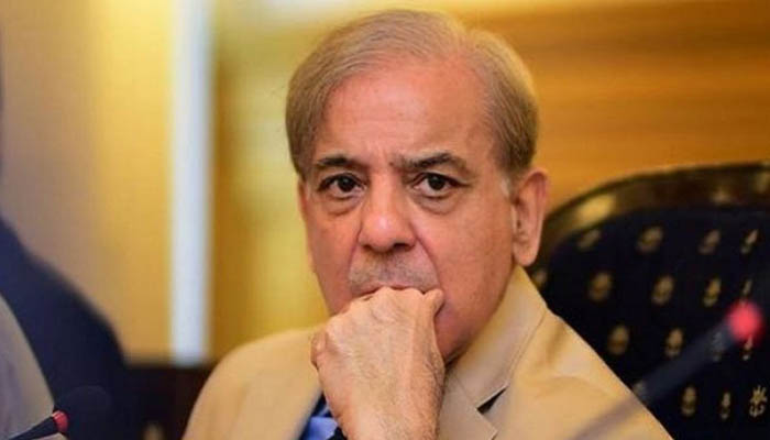 NAB freezes properties acquired by Shehbaz, Hamza and Salman citing corruption offences