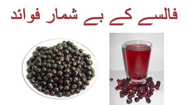 Falsa k Fayde Health Benefits of Grewia asiatica in Urdu