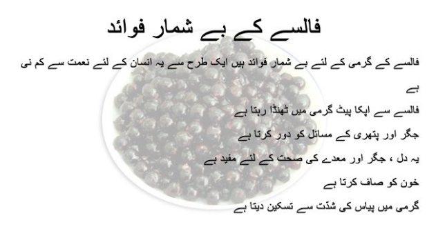 Falsa Benefits In Urdu | Grewia Asiatica Health Benefits