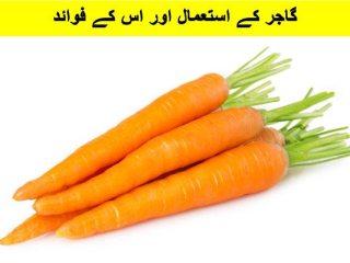 chane ki daal ka halwa recipe video, chane ki daal ka halwa recipe in urdu, chana dal halwa pakistani recipe, chana dal ka halwa recipe in urdu,