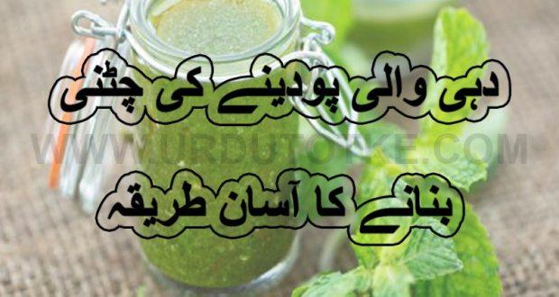 pudine ki chutney ramadan special iftar recipes