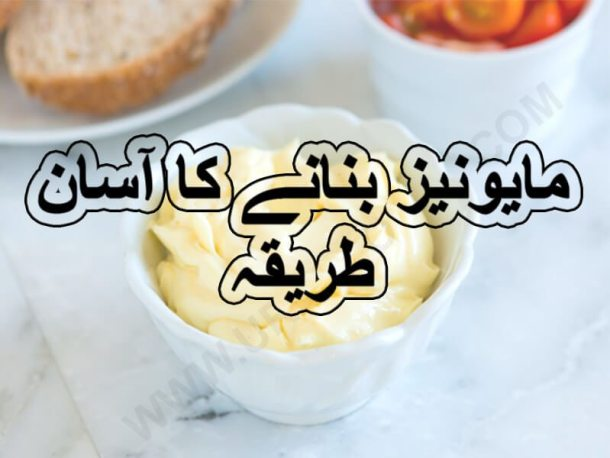 easy homemade mayonnaise