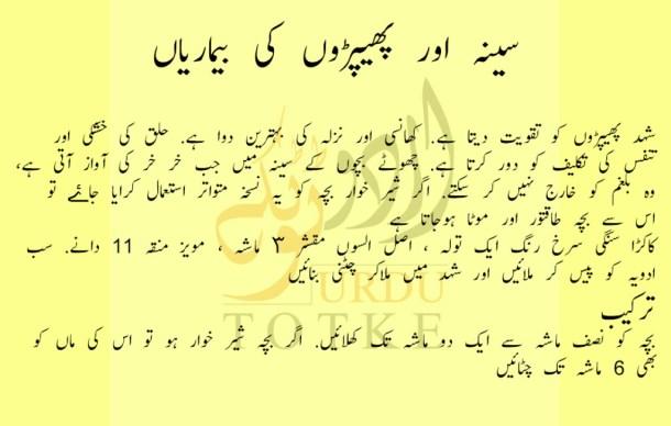lungs diseases solutions in urdu