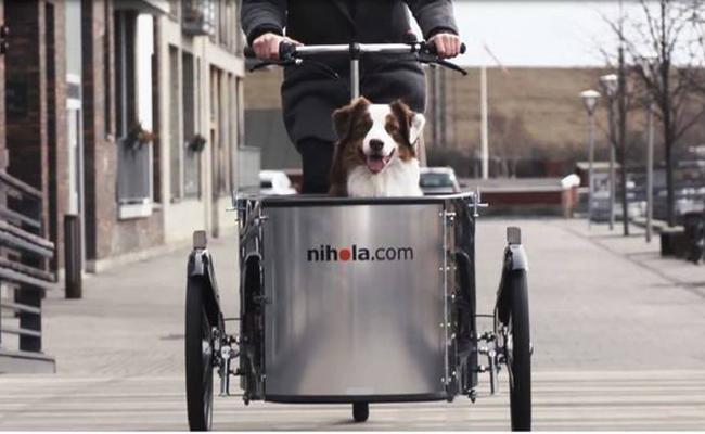 Nihola_Dog_Cargo_Lifestyle_Front