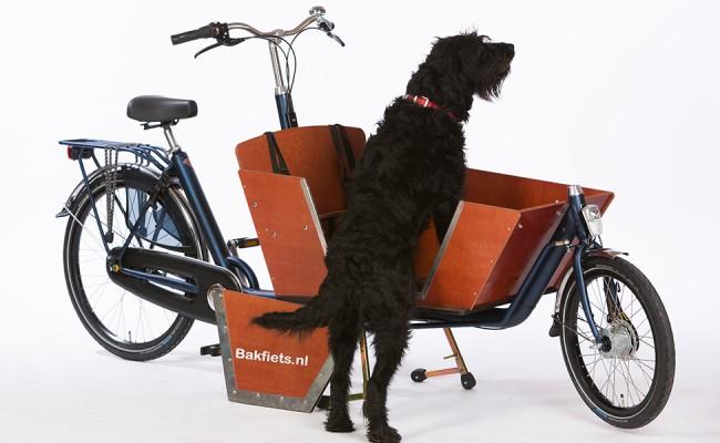 Bakfiets-NL-Doggy-Door