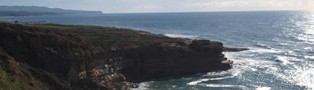 Ausblick auf Praia dos Coxos