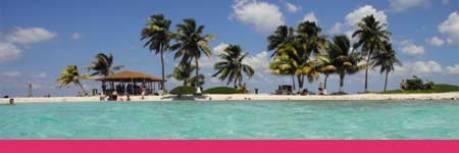 Die besten Partner-Links von Urlaubsdealer.com
