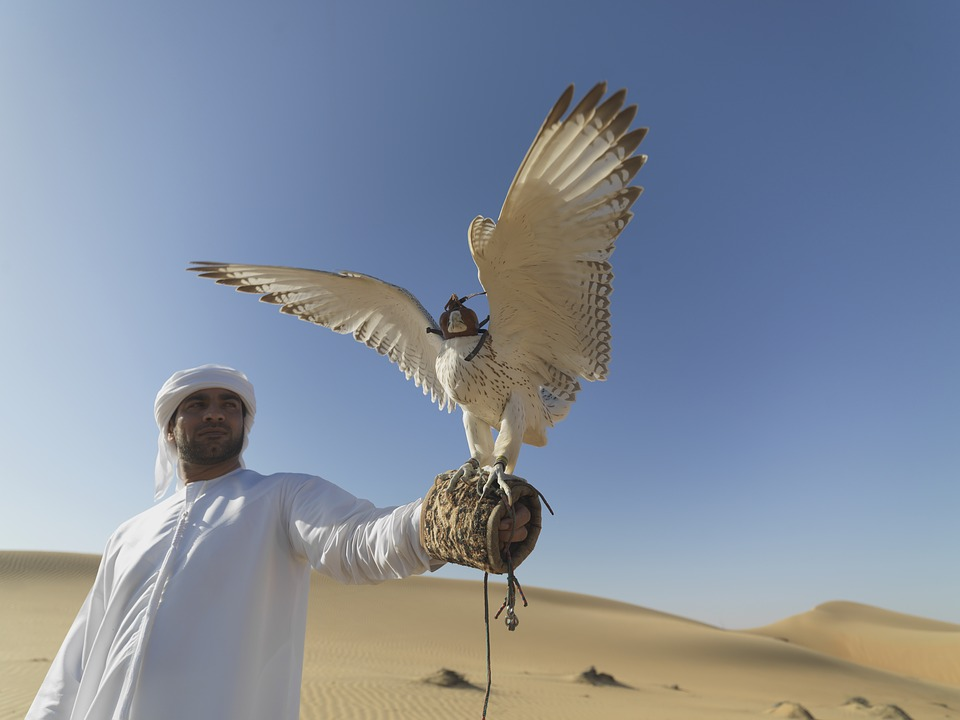 falcon-emirates-