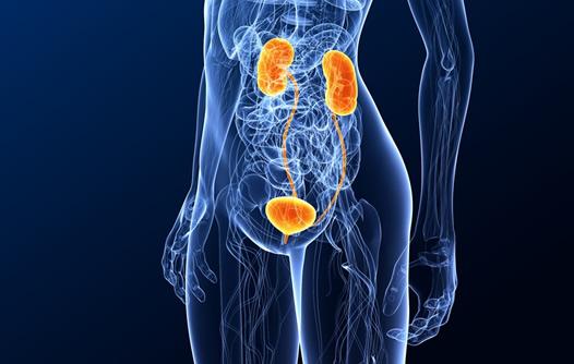 Litiasis (piedras) en riñón, uréter y vejiga