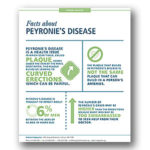 Peyronie's Disease or Curved Penis: What You Should Know