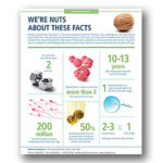 WE'RE NUTS ABOUT THESE FACTS
