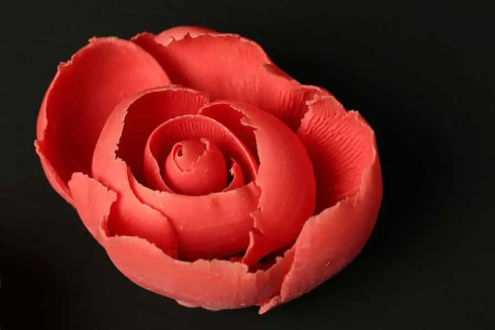 Image de dessus d'une fleur