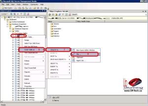 export-sql-table-schema