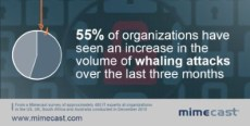 whaling-attacks