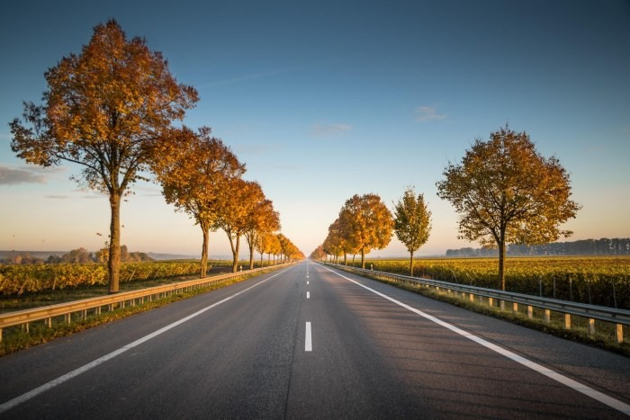 straight-paved-road-guard-rails-trees