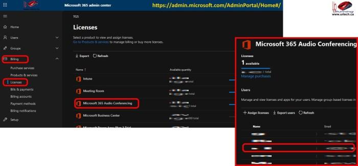 Microsoft Teams Audio Licenses