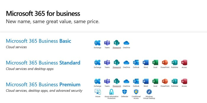 What is included in Microsoft 365 Business Pacakges