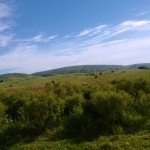 Camino Paso Arriera-8