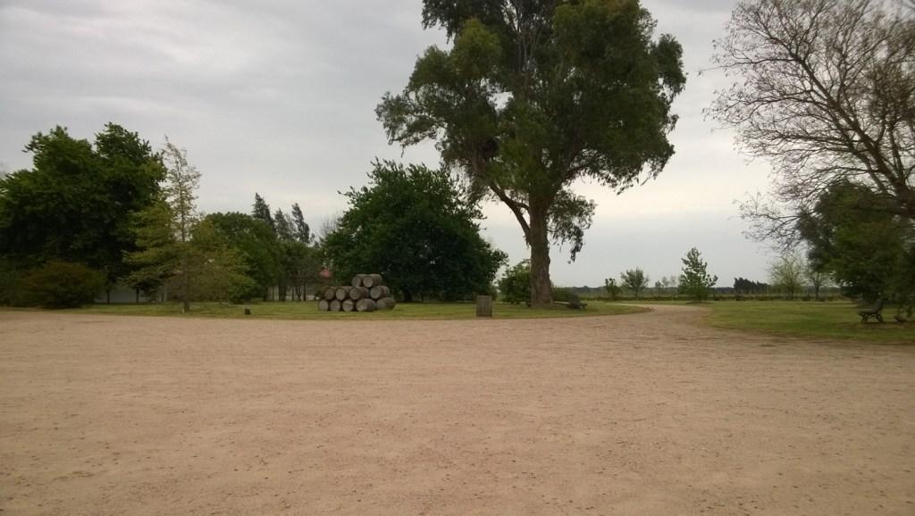 Bodega Juanico-1