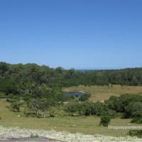 Una vuelta por el parque nacional de Santa Teresa