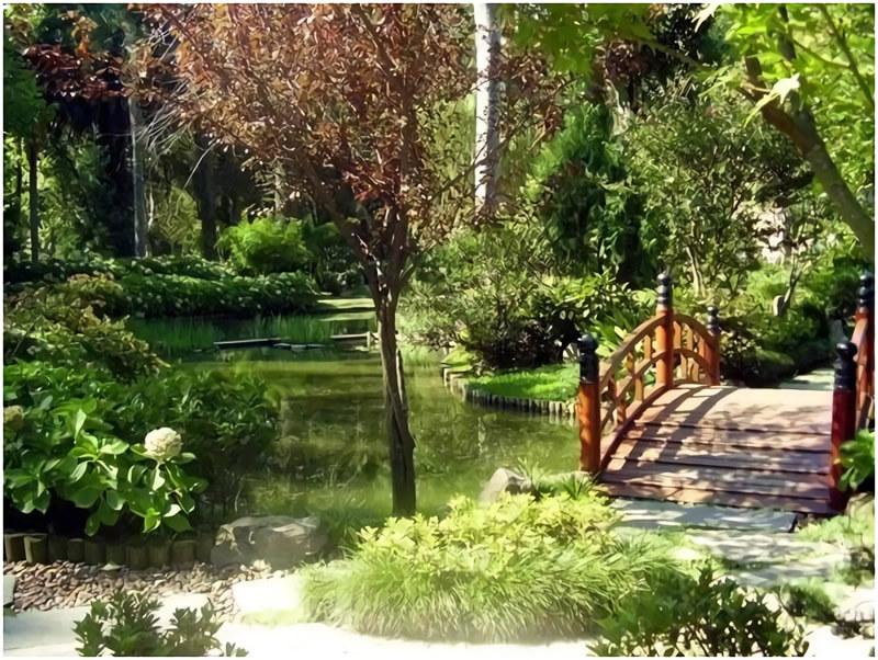 Jardín Botánico de Montevideo su historia