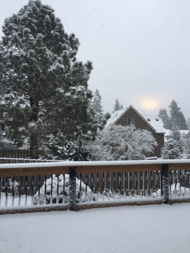 オレゴン州ポートランド 雪