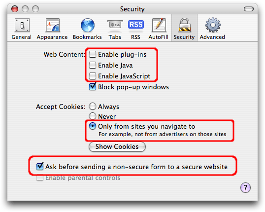 Screen shot of Apple Safari Security dialog with the options for Enable plug-ins, Enable Java, and Enable JavaScript all unchecked; the Accept Cookies option set to Only from sites you navigate to; and the option for Ask before sending a non-secure form to a secure website checked