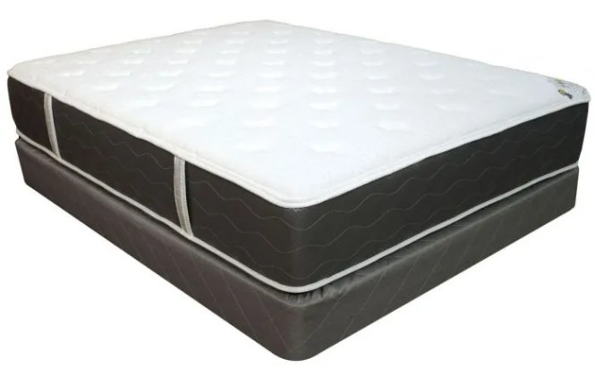 Queen Spring Air Four Seasons Back Supporter Dreams Double Sided Plush Mattress