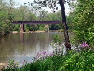 Flowing Monocacy