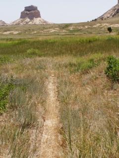 Trail Ruts