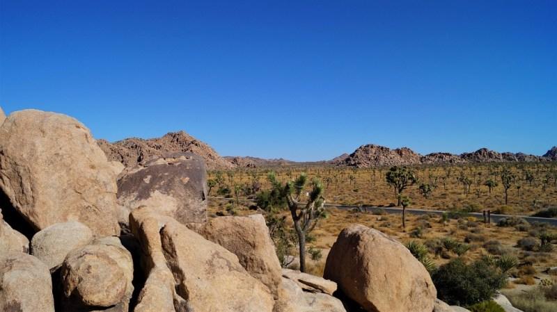 Im Joshua Tree Nationalpark gibt es ein Plumpsklo