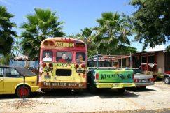 Bunte Sightseeing Surfer-Busse auf Hawaii.