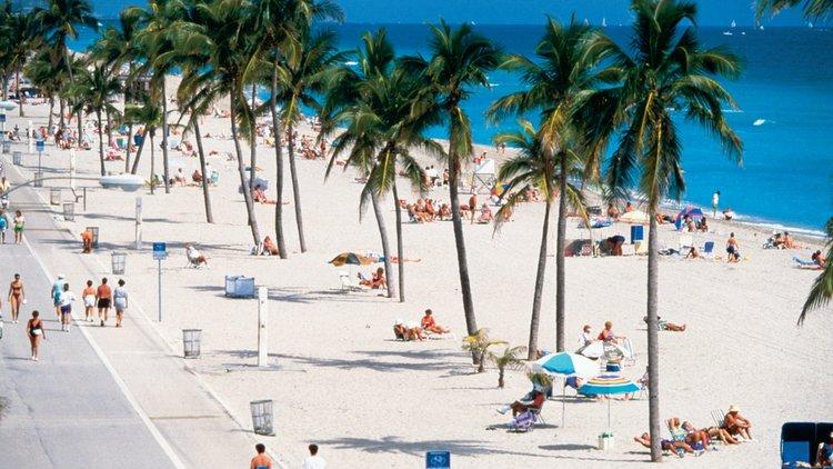 Bildergebnis für Florida