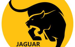 jaguar fireworks